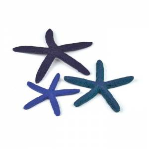 biOrb Star Fish Decor set modrá 12, 10 a 8 cm