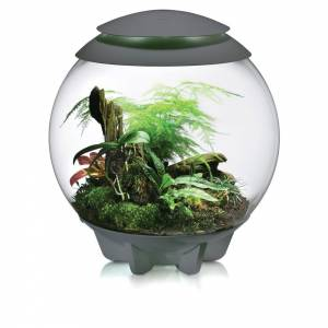 BiOrb Air Terrarium - sivá